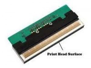 TSC 244 Pro - Spare Part - Printer Head